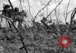 Image of Aggressors troops Vieques Island Puerto Rico, 1950, second 25 stock footage video 65675043405