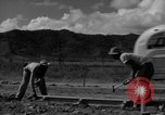 Image of Houses under construction San Juan Puerto Rico, 1950, second 36 stock footage video 65675043419