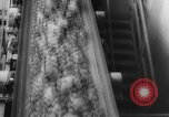 Image of Copper mine Chile, 1944, second 29 stock footage video 65675043435