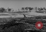 Image of Geraman troops Russian Front, 1943, second 36 stock footage video 65675043484
