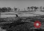 Image of Geraman troops Russian Front, 1943, second 37 stock footage video 65675043484