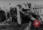 Image of Geraman troops Russian Front, 1943, second 46 stock footage video 65675043484