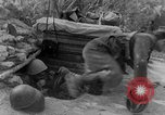 Image of Italian troops Tunisian Front, 1943, second 12 stock footage video 65675043485