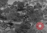 Image of Italian troops Tunisian Front, 1943, second 41 stock footage video 65675043485