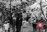 Image of natives in town Ceylon, 1937, second 14 stock footage video 65675043493