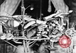 Image of Temples Penang Malaysia, 1937, second 30 stock footage video 65675043494