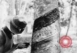 Image of natives in city Singapore, 1937, second 59 stock footage video 65675043495