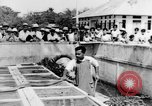 Image of Everyday life in Asian city Bangkok Thailand, 1937, second 46 stock footage video 65675043496