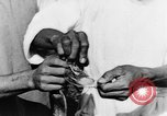 Image of Everyday life in Asian city Bangkok Thailand, 1937, second 49 stock footage video 65675043496