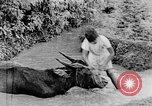 Image of Wonders of the World Java Indonesia, 1937, second 48 stock footage video 65675043499