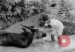 Image of Wonders of the World Java Indonesia, 1937, second 49 stock footage video 65675043499