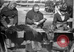 Image of French women make camouflage France, 1918, second 18 stock footage video 65675043546