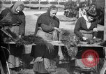 Image of French women make camouflage France, 1918, second 19 stock footage video 65675043546