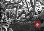 Image of trench camouflage World War 1 France, 1918, second 8 stock footage video 65675043548