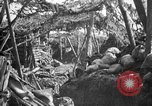 Image of trench camouflage World War 1 France, 1918, second 14 stock footage video 65675043548