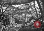 Image of trench camouflage World War 1 France, 1918, second 15 stock footage video 65675043548
