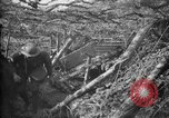 Image of trench camouflage World War 1 France, 1918, second 22 stock footage video 65675043548