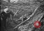 Image of trench camouflage World War 1 France, 1918, second 23 stock footage video 65675043548