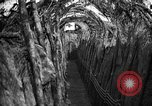 Image of trench camouflage World War 1 France, 1918, second 26 stock footage video 65675043548