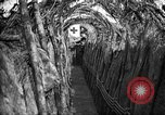 Image of trench camouflage World War 1 France, 1918, second 28 stock footage video 65675043548