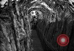 Image of trench camouflage World War 1 France, 1918, second 29 stock footage video 65675043548