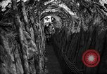 Image of trench camouflage World War 1 France, 1918, second 30 stock footage video 65675043548