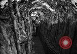 Image of trench camouflage World War 1 France, 1918, second 32 stock footage video 65675043548