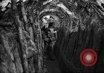 Image of trench camouflage World War 1 France, 1918, second 35 stock footage video 65675043548