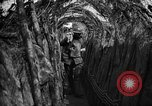 Image of trench camouflage World War 1 France, 1918, second 36 stock footage video 65675043548