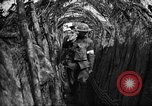 Image of trench camouflage World War 1 France, 1918, second 37 stock footage video 65675043548