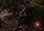 Image of 7th Infantry Division soldiers Korea, 1968, second 11 stock footage video 65675043558