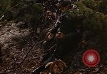 Image of 7th Infantry Division soldiers Korea, 1968, second 16 stock footage video 65675043558