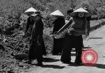 Image of highway construction Vietnam, 1957, second 50 stock footage video 65675043578