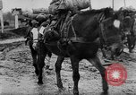 Image of German soldiers Russia, 1944, second 50 stock footage video 65675045013
