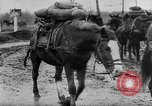 Image of German soldiers Russia, 1944, second 52 stock footage video 65675045013