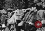 Image of Indian troops on Kashmir border India, 1966, second 54 stock footage video 65675045077