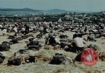Image of German soldiers at end of World War 2 in Europe Czechoslovakia, 1945, second 19 stock footage video 65675046385