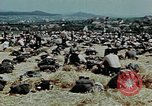 Image of German soldiers at end of World War 2 in Europe Czechoslovakia, 1945, second 20 stock footage video 65675046385