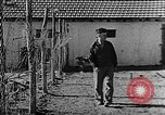 Image of Life in Zionist moshav and Kibbutz colonies Palestine, 1941, second 32 stock footage video 65675047424