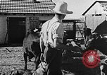 Image of Life in Zionist moshav and Kibbutz colonies Palestine, 1941, second 36 stock footage video 65675047424