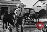 Image of Life in Zionist moshav and Kibbutz colonies Palestine, 1941, second 38 stock footage video 65675047424