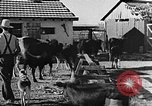 Image of Life in Zionist moshav and Kibbutz colonies Palestine, 1941, second 40 stock footage video 65675047424