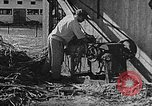 Image of Life in Zionist moshav and Kibbutz colonies Palestine, 1941, second 42 stock footage video 65675047424