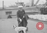 Image of USS Tennessee Brooklyn New York City USA, 1920, second 47 stock footage video 65675049928