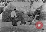Image of bean cakes China, 1938, second 5 stock footage video 65675050390