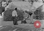 Image of bean cakes China, 1938, second 6 stock footage video 65675050390