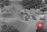 Image of bean cakes China, 1938, second 35 stock footage video 65675050390