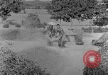Image of bean cakes China, 1938, second 39 stock footage video 65675050390