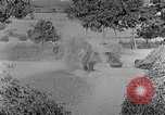 Image of bean cakes China, 1938, second 43 stock footage video 65675050390
