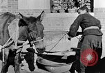 Image of bean cakes China, 1938, second 54 stock footage video 65675050390